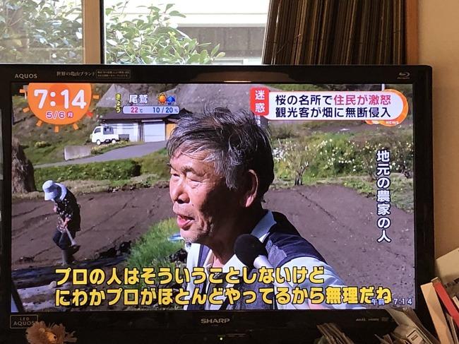 カメラ 桜 私有地 不法侵入に関連した画像-03