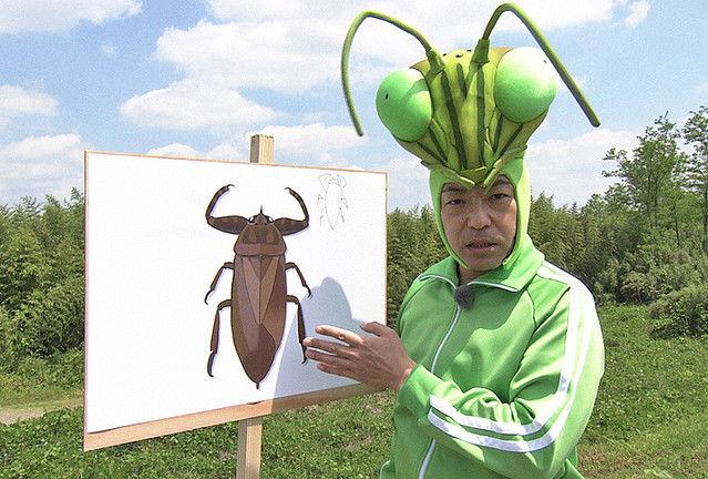 香川照之 昆虫 夏休み NHK タガメに関連した画像-01