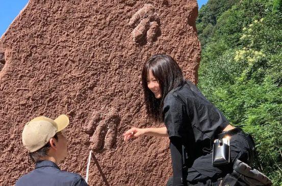 中国 新種 足跡 化石 恐竜 のび太に関連した画像-01