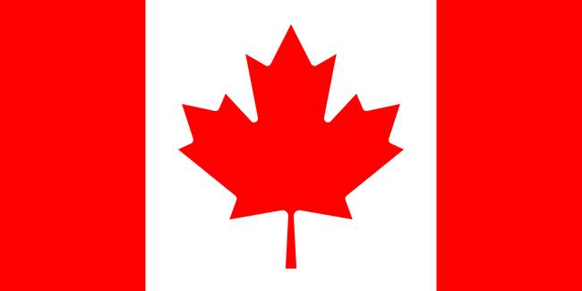 カナダ 新型コロナ 感染 夫人に関連した画像-01