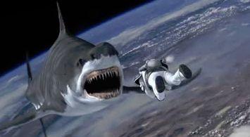 MARVEL サメ 映画に関連した画像-01