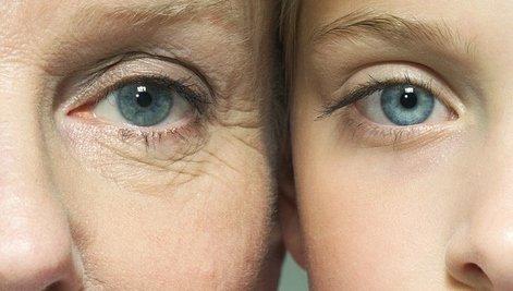 iPS細胞 応用 研究 老化 若返り 不老不死 に関連した画像-01