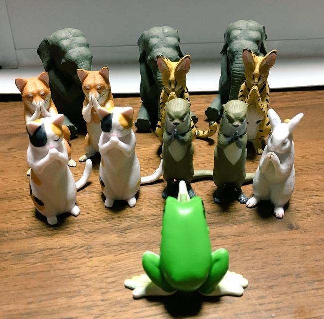 合唱 ガチャガチャ ガシャポン 動物 宗教に関連した画像-03