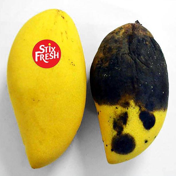 果物 フルーツ 成熟 長持ち 遅らせる マレーシア バナナに関連した画像-03