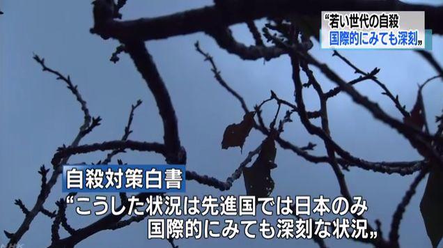 自殺 若者 死因 政府白書に関連した画像-01