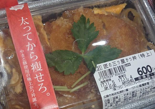 カツ丼 痩せる 太る デブ カロリー キャッチコピーに関連した画像-02