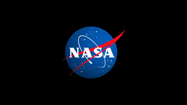 nasa-meatball-logo