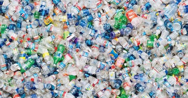 ペットボトル 分解 酵素に関連した画像-01