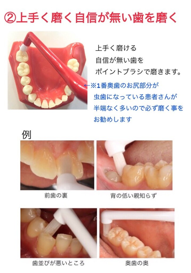 歯 歯科衛生士 オタク ハミガキに関連した画像-03
