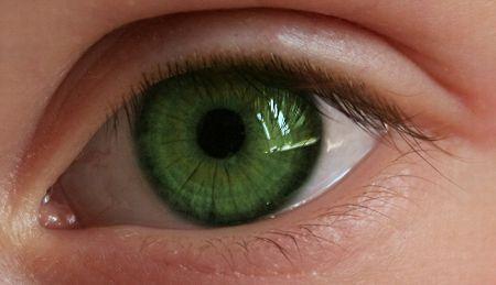 エボラ 瞳の色が緑にに関連した画像-01