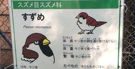 すずめ 動物園 紹介文 大森山動物園に関連した画像-01