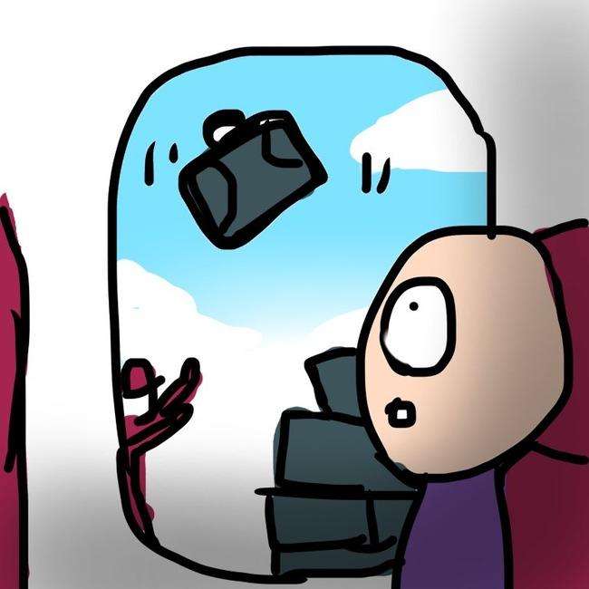 国際線 飛行機 機内 スーツケース 空を飛ぶ 荷物 ツイッター 日本語に関連した画像-02
