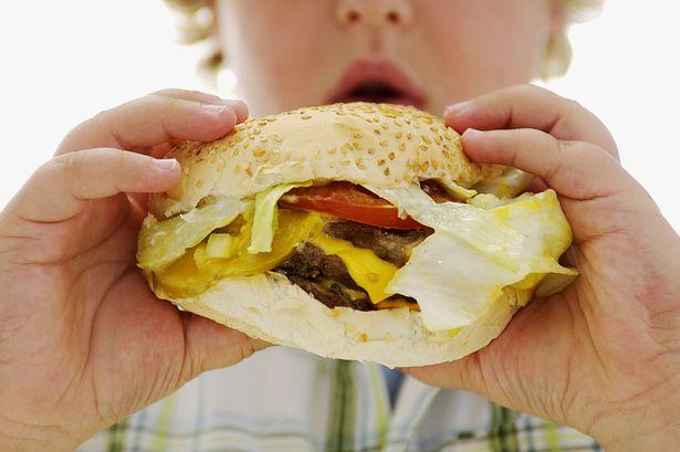 Boy-holding-hamburger-2951422