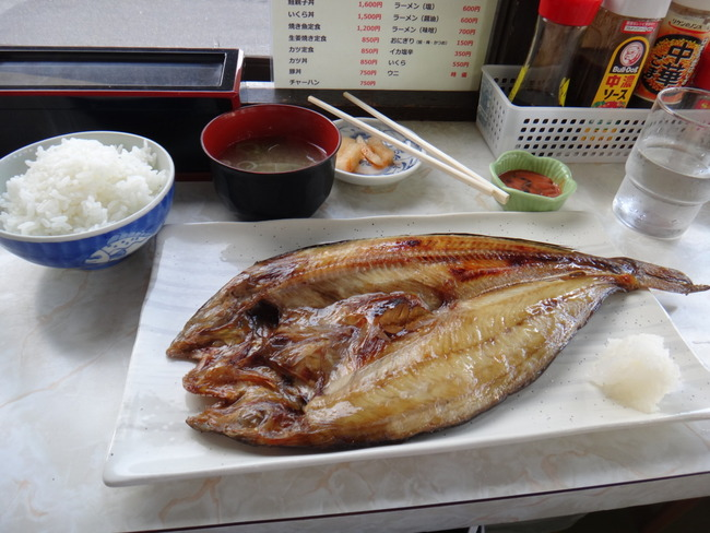 魚に関連した画像-01