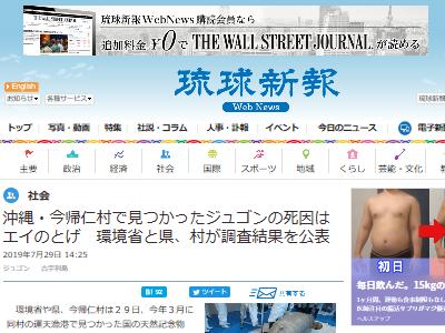 沖縄 辺野古 ジュゴン 死因 エイ 埋め立て 捏造に関連した画像-02