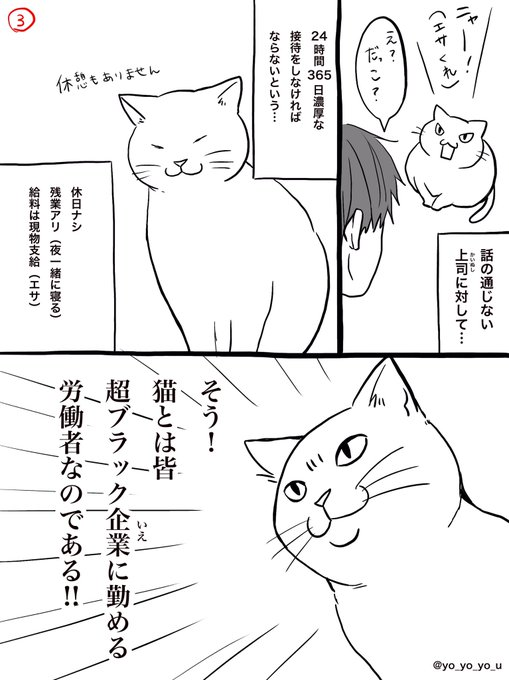 猫 ネコ ブラック セクハラに関連した画像-02