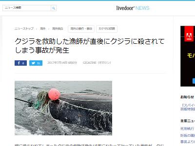 クジラ 救助 漁師 死亡に関連した画像-02