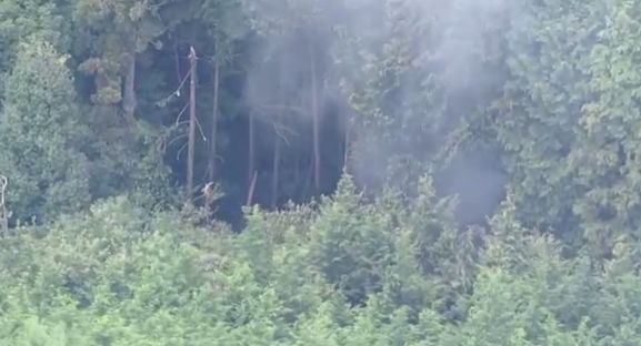 飛行機 墜落 奈良に関連した画像-01
