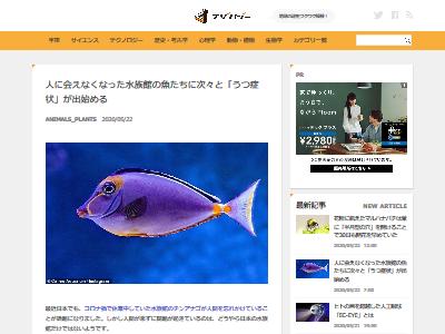 水族館 魚 うつ病に関連した画像-02