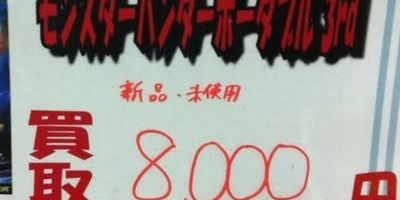モンハンカイトリ8000円