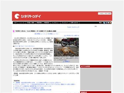 世界ネコ歩き 岩合光昭 映画化 コトラ 未公開シーンに関連した画像-02