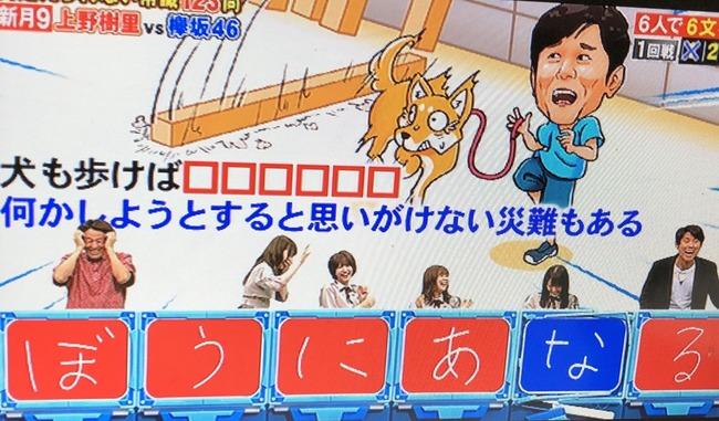 ネプリーグ 欅坂46 犬も歩けば棒に当たる 放送事故に関連した画像-03