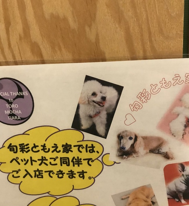 犬の写真 バケモノ に関連した画像-02