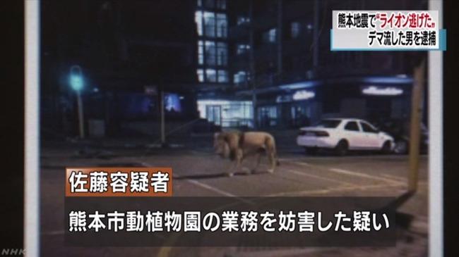 ツイッター デマ 逮捕 熊本地震 ライオン 動物園に関連した画像-05