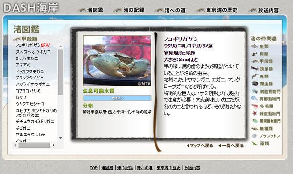 TOKIO トキオ 鉄腕ダッシュ カニ 珍種 絶滅危惧種 ノコギリガザミ DASH海岸 無人島に関連した画像-03
