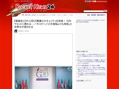 G20 侵入者 猫に関連した画像-02