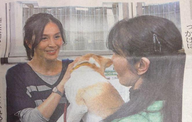 ペット 殺処分 販売 サービスに関連した画像-05