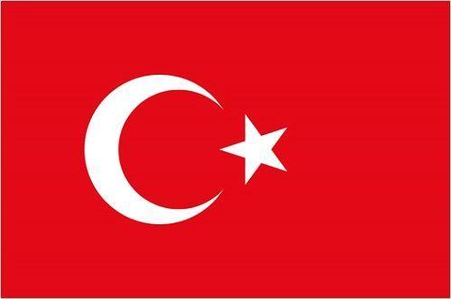 トルコ 首都 アンカラ 爆発 テロ 死亡 死者 ケガ NGO デモに関連した画像-01