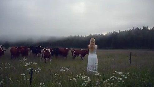キュールニング 牛 交尾に関連した画像-04