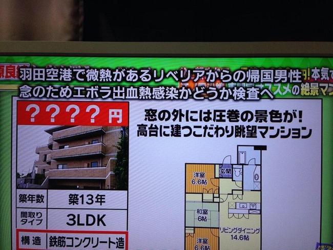 エボラ 日本上陸に関連した画像-02