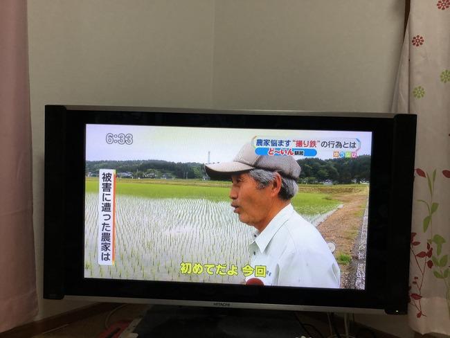 撮り鉄 田んぼ 水 無断 農家 リフレクションに関連した画像-02