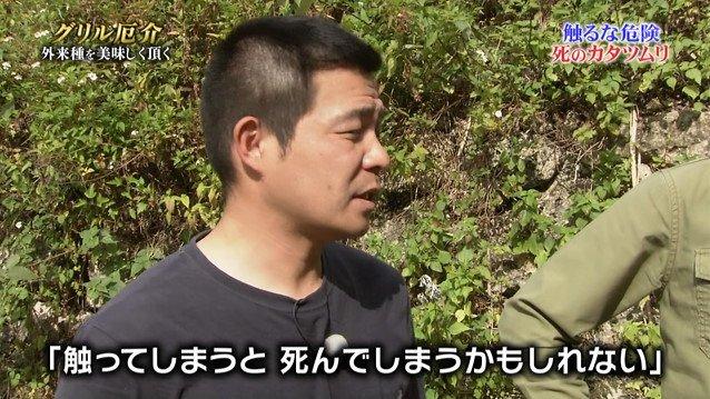TOKIO カタツムリ 鉄腕ダッシュに関連した画像-03