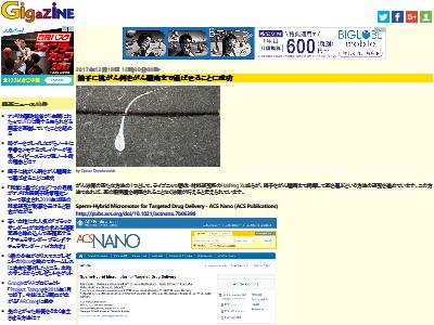 精子 がん治療 精子ボットに関連した画像-02