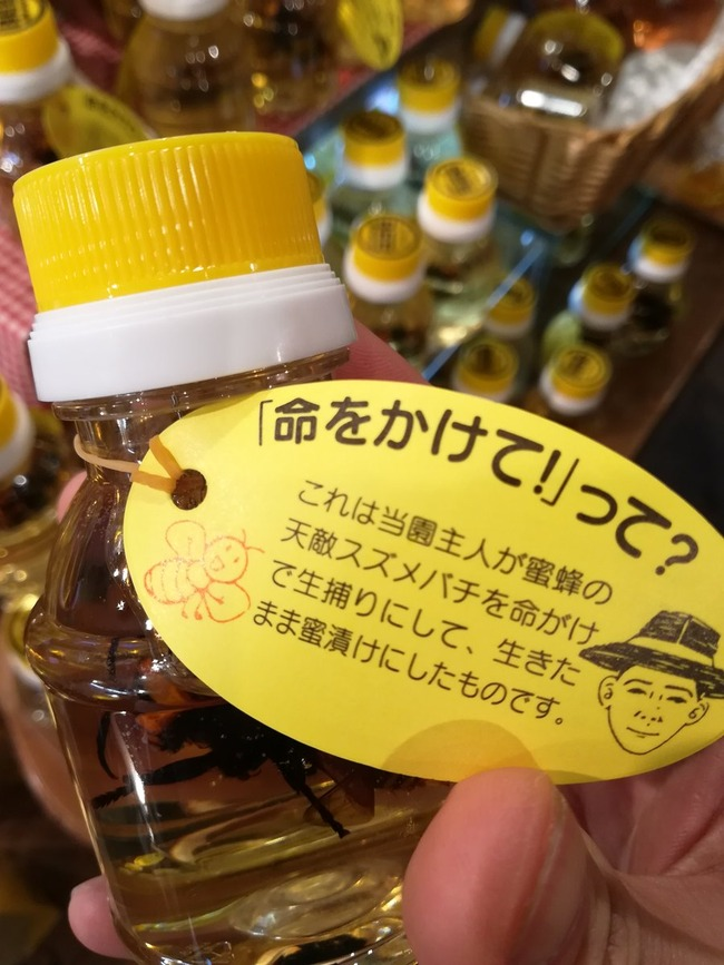 養蜂家 オオスズメバチ はちみつ漬けに関連した画像-04