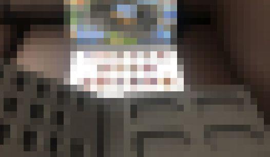 楽天 ゲームギアミクロ セガ 中身 なしに関連した画像-01