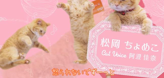 au ネコ にゃにゃにゃにゃ食堂 小岩井ことり 阿澄佳奈に関連した画像-04