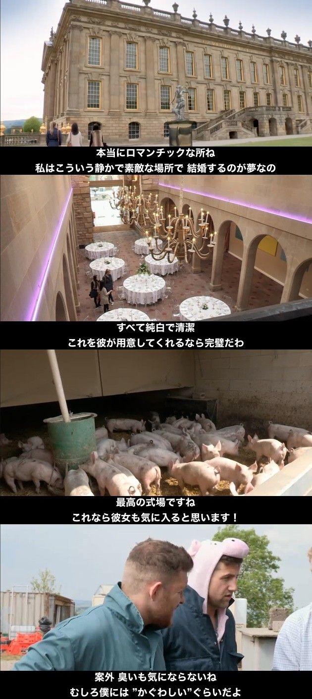 豚小屋 ブタ 結婚式 サプライズ 新郎 新婦に関連した画像-05