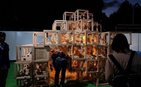 東京デザインウィーク 炎上 忘年会に関連した画像-01