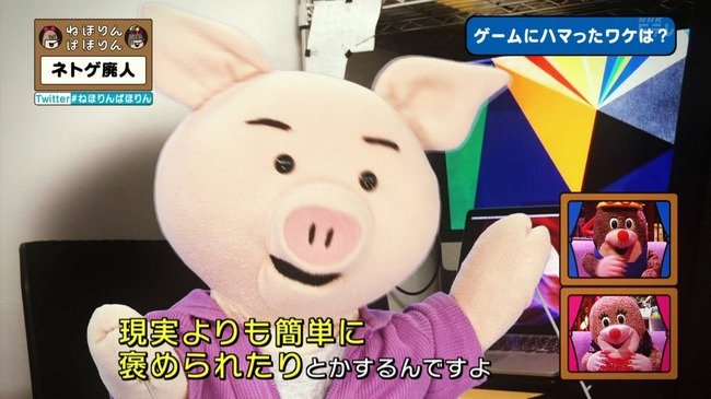 ネトゲ ネトゲ廃人 NHK 特集 ねほりんぱほりんに関連した画像-25