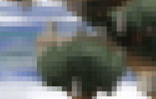 ゲーマー 青春 スマブラ 神殿 思い出に関連した画像-01