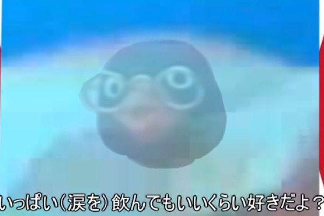 ピングー 新作 ケツデカピングー NHK ニコニコ動画 ツイッターに関連した画像-13