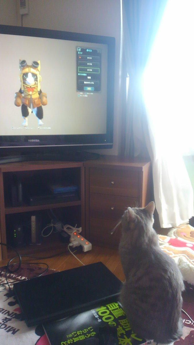 モンハンワールド アイルー 猫に関連した画像-03