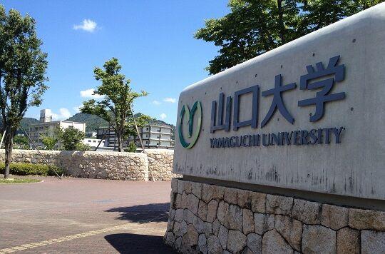 山口大学志願理由書シュレッダーに関連した画像-01