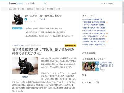 猫 人助けに関連した画像-02