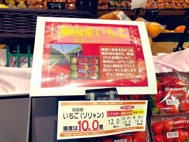 韓国産いちご ソリャン ソルヒャン 雪香 盗み パクリ 流出 日本 イオン 輸入に関連した画像-04