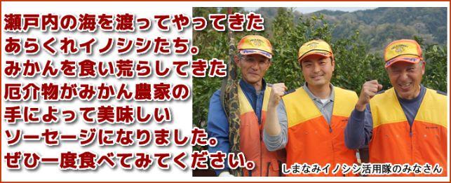 みかん農家 イノシシに関連した画像-04